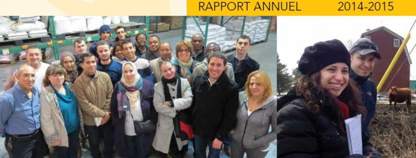 rapport annuel 1516